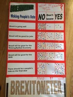 Woking People's vote Brexitometer
