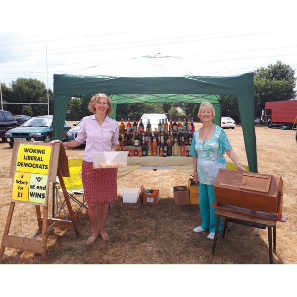Byfleet parish Day (Woking Lib Dems)